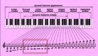 ... на фортепиано или синтезаторе ноты