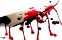 Молодой человек убил соседа двадцатью ударами ножа в Тосноа</p> <p>Санкт-Петербург, 10 сентября. Жестокое убийство раскрыто в Ленинградской области. 24-летнего молодого человека убили двадцатью ножевыми ранениями. Об этом сообщает Следственное управление Следственного комитета по Ленинградской области.</p> <p>Тело 24-летнего мужчины с множественными ножевыми ранениями было обнаружено в квартире одного из домов в Тосненском районе Ленобласти 8 сентября. По данному факту следственные органы возбудили уголовное дело по статье «убийство».</p> <p>По подозрению в совершении преступления был задержан сосед убитого – 21-летний Виктор Пульков. По версии следствия, Пульков убил друга 8 сентября. Он нанес молодому человеку около 20 ножевых ранений в голову, шею, грудь, спину и по конечностям. Мотивы убийства пока не установлены.</p> <p>Пульков задержан, следствие ходатайствует о заключении его под стражу.</p> <p>Текст: Яна Сайдашева</p> <p>http://nevnov.ru/proisshestviya/molodoj-chelovek-ubil-soseda-dvadczatyu-udarami-nozhom-v-tosno.html