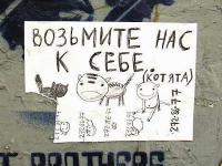 Самые оригинальные объявления Рунета! Орфография авторская.</p> <p>1. Крупный попугай (Днепропетровск)<br /> Продам срочно попугая Ара Макао, говорящий. Сил больше нет ))</p> <p>2. Фортепиано расстроенное (Киев)<br /> Люди добрые! Заберите, Бога ради, на дрова или на что-нибудь еще расстроенное пианино - дочь 10 лет не играет. В придачу 100 гривен!<br /> 3. Девушку для совместной аренды (Киев)</p> <p>Ищу девушку, любящую котов, для совместной аренды одно или двухкомнатной квартиры.<br /> Мне 25 лет. Фото кота прилагается.</p> <p>4. Стоматологические услуги в обмен на Ваши – немецкий, танцы, другое (Киев)</p> <p>5.  Отдам за яблочки бюстгальтер (Киев)<br /> Бюстгальтер черный, регулируемые и съемные бретельки, чашка твердая, абсолютно новый с биркой Anttifu Lingerie (покупала на рынке, подружке которой хотела подарить, увы, не подошла чашка, а мне уж подавно не подойдет - вот и меняю.<br /> Размер бюстика XL 85В, то есть обхват 85, чашечка 2 - 2,5.<br /> Отдам за 3 кг вкусных яблочек. Встреча - метро Сырец.</p> <p>6. Анализы от армии (Киев)<br /> Помогу с материалом - по анализам в армию не возьмут, проверено!</p> <p>7. Продам скейт ( купил на базаре за 300 грн), после падения передумал, Киев)<br /> Скейт-борд в очень хорошем состоянии, почти не катался на нём, после падения. Есть небольшие потёртости на носу и сзади.<br /> Если заинтересует - скину фото.</p> <p>8. Ищу подругу жизни, умеющую чистить рыбу, копать червей, располагающую моторной лодкой. Фотография лодки обязательна.</p> <p>9. Очень хочу бегать по утрамвечерам + большой теннис (Киев, Нивки)<br /> Очень хочу возобновить пробежки! Начали с подругой бегать, а теперь выходит остался лишь у меня азарт.. после того выбиралась сама пару раз на пробежку, но чувствую, что так долго не продержусь. Уж сладок сон.<br /> Выходим на пробежку? Еще у меня ракетка для большого тенниса появилась, и у друга резко сессия началась...Вот такие расстройства. об опыте: пару раз играла...