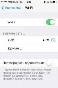 Вошли в WiFi айфона Настройка