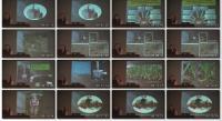 Скачать Выращивание чеснока (2012) DVDRip