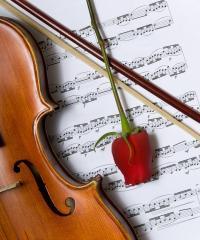 Романтические фоны со скрипкой