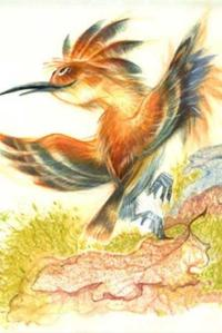 Заяц, Волк и другие» в Школе акварели ...