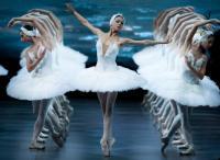 К премьере был опубликован клавир балета, подготовленный Н.Д.Кашкиным