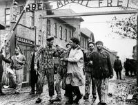 70 лет назад Красной армией были освобождены узники Освенцима</p> <p>27 января 1945 года силами Красной армии были освобождены узники лагеря смерти Освенцим. В Международный день памяти жертв холокоста давайте вспомним, как это происходило.</p> <p>Семь кругов Аушвица</p> <p>Неподалеку от польского городка Освенцим раскинулся одноименный концентрационный лагерь. Немцы предпочитали называть его Аушвиц, считая польский топоним неподходящим. Он был основан в мае 1940 года по приказу Гитлера, а строился силами еврейской общины города Освенцим, представителей которой насильно согнали на смертельную стройку.</p> <p>А уже осенью 1941 года в Освенциме появились первые советские военнопленные.</p> <p>Именно им пришлось заняться строительством новой части концлагеря, получившей название Аушвиц II — Биркенау. Именно сюда по завершении строительства привозили до 90% всех заключенных. Причем порядка трех четвертых из них немедленно отправляли в газовые камеры, которых там было четыре.</p> <p>К 1943 году силами пленных были построены четыре крематория. В сутки в них сжигалось порядка 8 тыс. человек. К сравнению, газовые камеры в силу меньшей пропускной способности работали круглые сутки с трехчасовым перерывом.</p> <p>Впоследствии силами заключенных был построен и третий блок, получивший название Аушвиц III. Там была организована псарня: почти 300 немецких овчарок жили в условиях, которым узники лагеря могли только позавидовать.</p> <p>Сбежать из концентрационного лагеря было практически невозможно. За все годы существования комплекса Освенцим было всего лишь 300 удачных попыток побега. При этом историки сходятся в том, что за эти годы в лагере было умерщвлено порядка 1,6 млн человек. Среди них были и младшие братья Степана Бандеры — Александр и Василий.</p> <p>Немцы особых подсчетов не вели. Так, комендант лагеря Рудольф Хесс писал, что «никогда не знал общего числа уничтоженных и не располагал никакими возможностями установить эту цифру».</p> <p>Освобождение.</p> <p>Конвейер сме